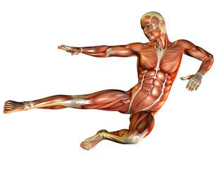 Muskelstudie Mann beim Sprung