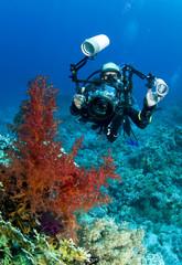 Tuinposter Duiken underwater photographer