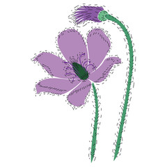 vector flower image