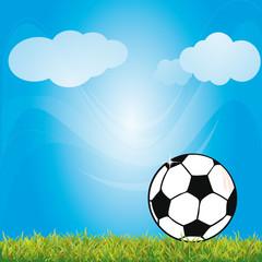 Fussball spielen auf der Wiese