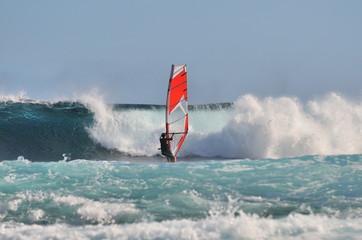Windsurfing par temps de houle.