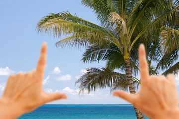 Hands Framing Palm Trees and Tropical Waters