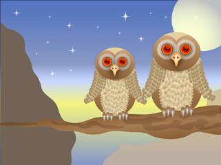 An owl vector  illustration