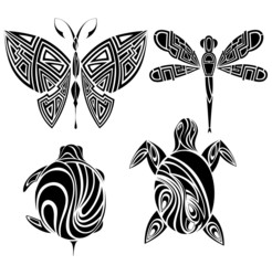 Tattoo design: butterfly, turtle,dragonfly