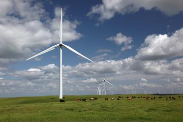 White Power Generating Wind Turbines