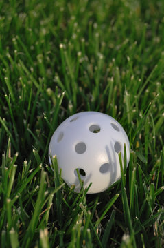 White Plastic Wiffle Golf Ball
