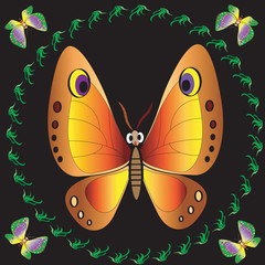 Butterfiys.