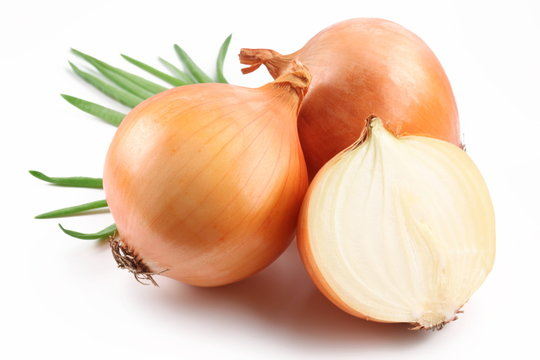 Fresh bulbs of onion on a white background
