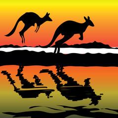 Kangaroo on the sunset Australia icon