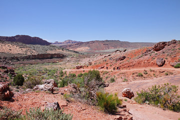 Fototapete - Canyon Landscape in the USA
