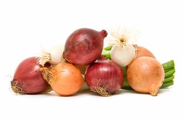 cebollas frescas sobre fondo blanco