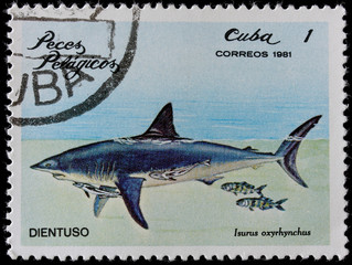 post stamp shows shark