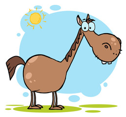 Brown Horse With A Long Neck In The Sunshine