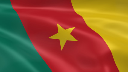Cameroonian flag in the wind