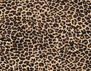 Foto auf Leinwand Leopard leopard skin as background
