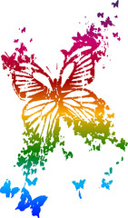 colourful butterfly design
