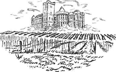 Vintage - vineyard and castle