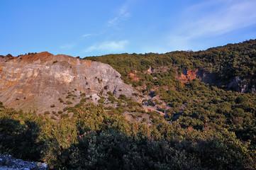 Green Area Mount Papandayan