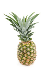 a tropical pineapple isolated over white