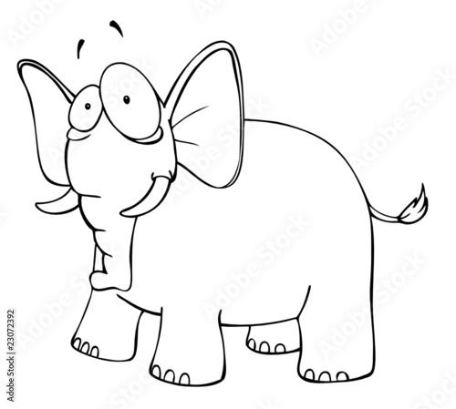 Elefant Verrückt Verwirrt Zoo Afrika Augen Safari Stockfotos