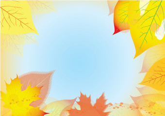 abstract background with autumn leaves and blue sky