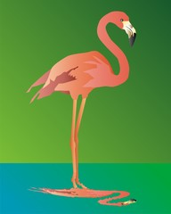 Pink flamingo on a green background