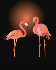 Pair of pink flamingos