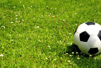 Fussball Wiese WM Ball