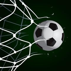 Goal Set 4
