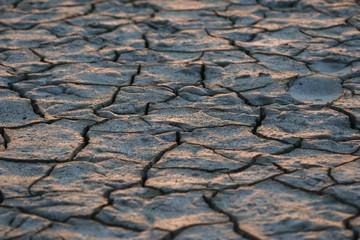 camargue fango