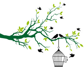 Aluminium Prints Birds in cages spring tree with birdcage and kissing birds