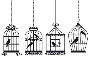 Ingelijste posters Vogels in kooien vintage birdcages with birds