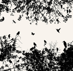 Photo Blinds Birds on tree tree