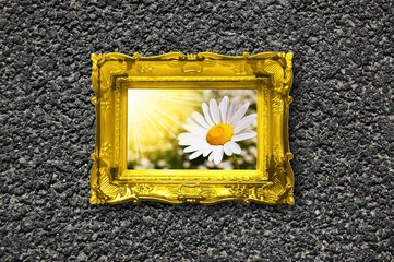 flowers and image frame on wall