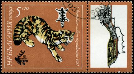 BULGARIA - CIRCA 1981 Leopard
