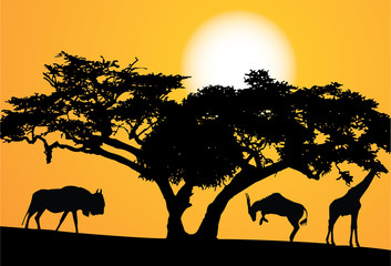 exotic trees and animals, set vector