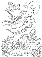 Octopus, turtle, fish and hermit crab