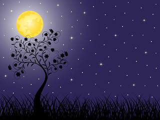 Night background with a tree