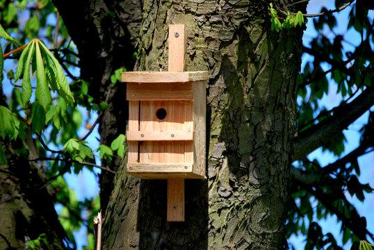 Neuer Vogelkasten