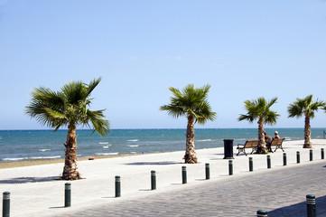 """Seaside Avenue """"Foinikoudes"""", Larnaca Cyprus promenade"""