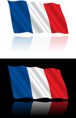 French Flag Flowing