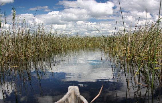Canoe in Okavango Delta, Botswana, Africa