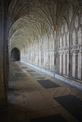 The Cloister in Gloucester Cathedral