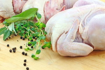 Fresh Chickens and Herbs