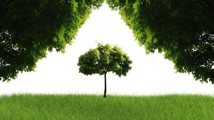 Fototapeta 3d nature scenerie obraz