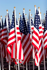 American flags during fourth of july
