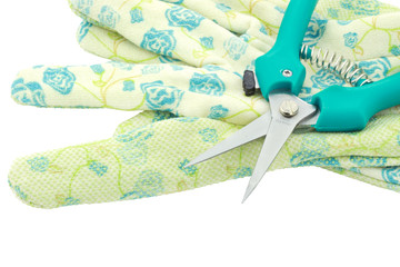 Garden shears and Gloves