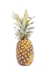 PINAPPLE FRUIT