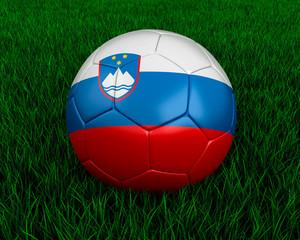 Slovenian soccer ball