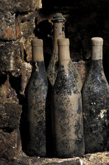 Old Bottle Wine